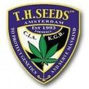 Семена конопли от T.H.SEEDS